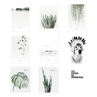 Láminas – botánica, aves y tipografía