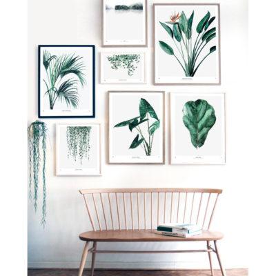 Lamina – botanica – plantas – greenery – Liderlamp (1)