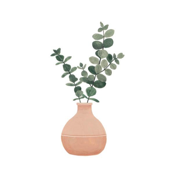 Lámina vegetal – eucalipto jarron – Hermano Gato – Liderlamp