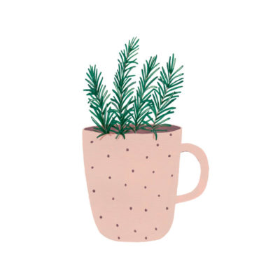 Lámina taza con romero - botánica - Hermano Gato - Liderlamp