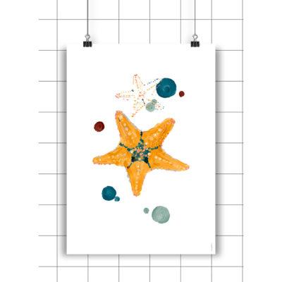 Lamina Starfish - Amayadeeme - ilustracion - decoracion infantil - Liderlamp