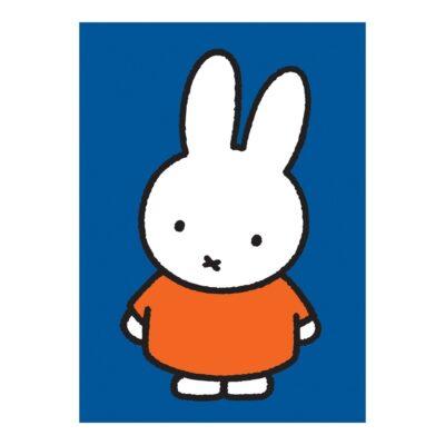 Pano de cocina - Miffy - textil cocina - deco - Magpie - Peanuts - Snoopy - Liderlamp (1)