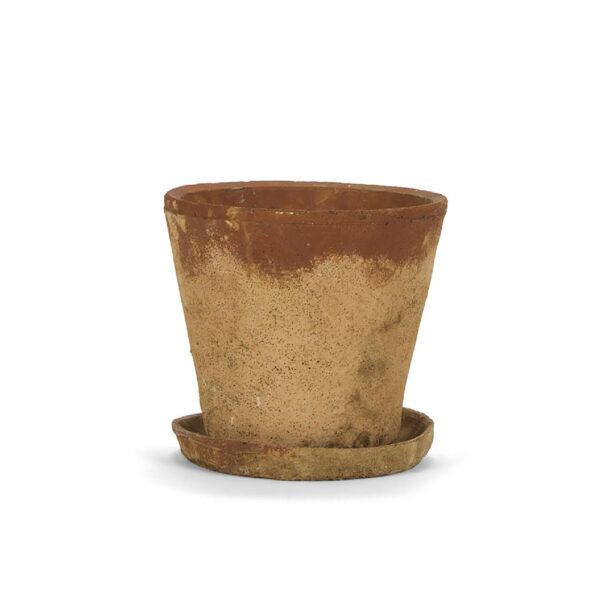 Maceta Cemento Rustic - Andrea House - Plantas Interior - Liderlamp (4)