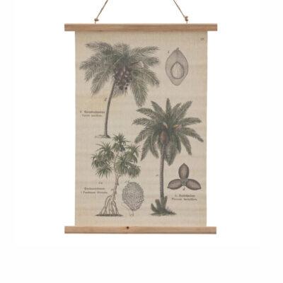 Pergamino Palmeras - lamina - decoracion pared - poster - botanica - Liderlamp (1)